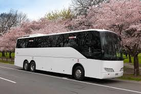 Redbus travel offers and special services