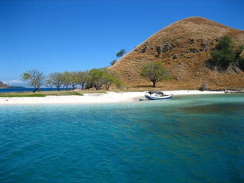 Tips for Travelers Going to Komodo Island in Indonesia