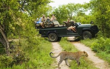Most Prominent African Wildlife sites You Should Bookmark